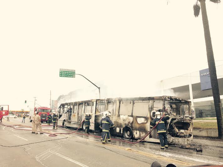 Bombeiros tentam controlar incêndio (Foto: Monique Portela)