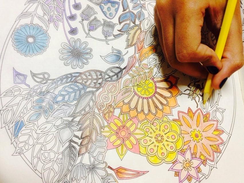"""Técnicas novas são alternativas no mercado para quem quer combater o estresse. Na foto, """"Floresta Encantada - livro de colorir e caça-tesouro anti-estresse"""". (Foto: Jean Carlos Gemeli)"""